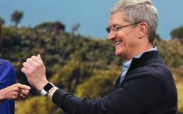 Tim Cook hé lộ doanh thu một dòng sản phẩm của Apple, tương đương công ty trong Fortune 500