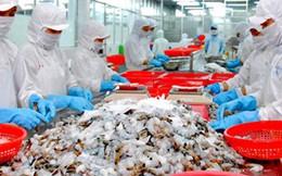 Xuất khẩu tôm có thể tăng mạnh trong những tháng cuối năm