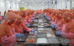 """""""Khan"""" hàng xuất khẩu, giá cá tra và tôm tăng mạnh"""