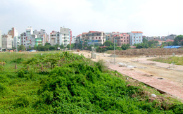 Phó Thủ tướng yêu cầu điều tra hình sự, xử lý nghiêm lãnh đạo để xảy ra vi phạm đất đai tại huyện Hoài Đức, Hà Nội
