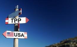 Nhật Bản muốn các nước ký TPP mà không cần Canada?