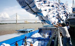 Gạo Việt chật vật cạnh tranh ở phân khúc chất lượng cao