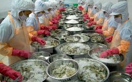 Ngành tôm Việt Nam chưa được định vị trên thị trường thế giới