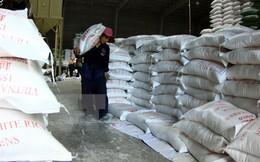 Xuất khẩu gạo có nhiều tín hiệu lạc quan sau thời gian dài trầm lắng