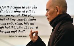Thiền sư Thích Nhất Hạnh hướng dẫn vượt qua trầm cảm bằng cách ngồi thiền đúng!