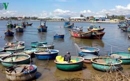 Ngư dân Bình Thuận đánh bắt gần bờ cho thu nhập cao