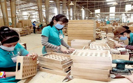 Xuất khẩu gỗ sang EU có thể đạt 1 tỉ USD vào năm 2020
