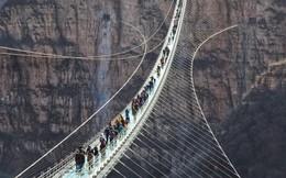 Cận cảnh chiếc cầu treo đáy kính dài nhất thế giới ở Trung Quốc đang thu hút hàng nghìn du khách mỗi ngày