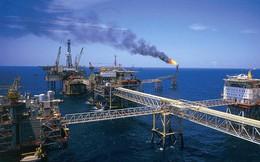 Tồn kho dầu thô của Mỹ giảm tuần thứ 10 liên tiếp, xuống mức thấp nhất 3 năm