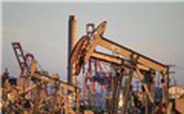 Giá dầu thô lên ngưỡng cao nhất hơn 3 năm