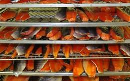 Mỹ từ chối nhập khẩu cá tra hun khói của Việt Nam
