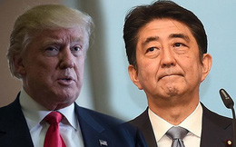 Nhật Bản phủ nhận quay lại đàm phán với Mỹ về TPP