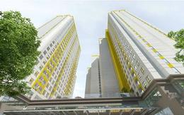 IBEWORTH bán bớt 255 Trái phiếu ngay trước khi Nam Long phát hành cổ phiếu chuyển đổi