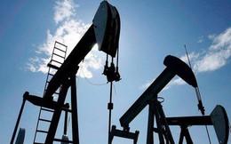 """""""Khát"""" nhựa đường, Trung Quốc mạnh tay mua dầu Canada"""