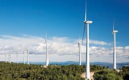 Bà Rịa - Vũng Tàu: Đầu tư dự án nhà máy điện gió hơn 4.000 tỷ đồng