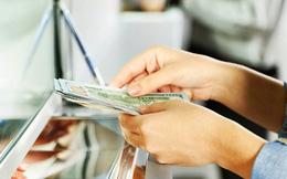 TPHCM: Mua bán USD tại các cửa hàng vàng vẫn tấp nập, công khai