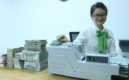 Lợi nhuận ngân hàng Việt vừa bơi vừa… đeo tạ