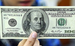 Lãnh đạo Bộ Tư pháp: Đổi 100 USD bị phạt 90 triệu đồng là đúng quy định