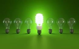 Bóng đèn Điện Quang (DQC): Giá vốn tăng cao, LNST quý 3 giảm 6% so với cùng kỳ