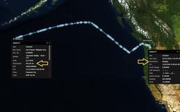 Không bán được hàng cho Trung Quốc, tàu Mỹ chạy sang Việt Nam?