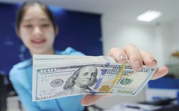 PwC: Doanh nghiệp Việt có cơ hội giải phóng lượng tiền mặt lên đến 4 tỷ USD