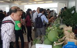 Gian nan xuất nông sản chính ngạch sang Trung Quốc