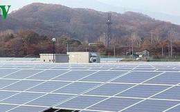 EVN đã ký 35 hợp đồng mua bán điện mặt trời