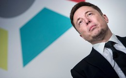 Cổ phiếu Tesla đang ở mức tồi tệ nhất trong 1,5 năm qua