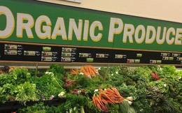 Ăn thực phẩm hữu cơ có giúp bảo vệ cơ thể và chống lại ung thư không? Đây là câu trả lời!