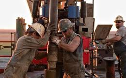 Trượt giá liên tục 10 ngày, dầu thô có chuỗi ngày giảm sâu nhất trong 34 năm, chứng khoán Mỹ tiếp tục mất điểm