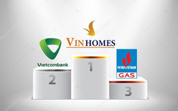 Cùng lãi trên 11.000 tỷ, Vietcombank và PV Gas bám đuổi quyết liệt vị trí quán quân lợi nhuận của VinHomes