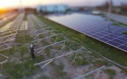 FECON lấn sân lĩnh vực điện mặt trời, vừa ký hợp đồng mua bán điện quan trọng với EVN