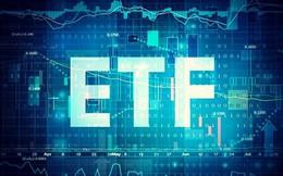 Review ETFs quý 4: GEX và HNG là những cái tên được chọn?