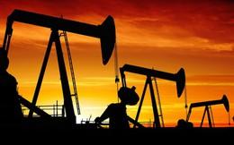 Giá dầu giảm sốc, cổ phiếu dầu khí sẽ ra sao?