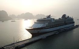 Hạ Long: Cảng tàu khách nghìn tỉ đón chuyến tàu quốc tế hạng sang đầu tiên