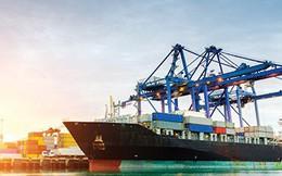 Ngành cảng biển cũng hưởng lợi từ chiến tranh thương mại Mỹ - Trung