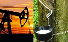 Thị trường ngày 13/2: Giá dầu, vàng, cao su, ngũ cốc đảo chiều tăng