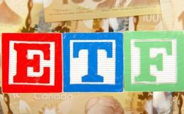 Không ngoài dự báo, GEX lọt vào danh mục VNM ETF trong đợt review cuối năm