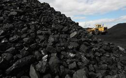 Nhu cầu than toàn cầu sẽ tiếp tục tăng tới năm 2023