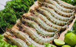 Xuất khẩu tôm sang nhiều thị trường lớn giảm mạnh