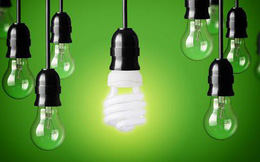DQC giảm sâu, Bóng đèn Điện Quang quyết định mua 3,7 triệu cổ phiếu quỹ