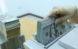 Tỷ giá trung tâm tiếp tục lập đỉnh, USD ngân hàng vẫn dưới 23.300 đồng