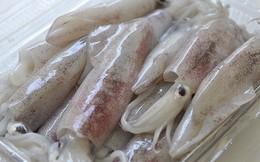 Xuất khẩu mực, bạch tuộc sang Italy chưa có dấu hiệu tăng trở lại