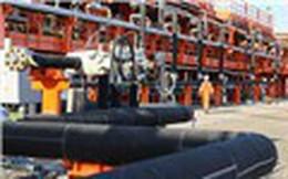 Giá dầu tăng trở lại mặc dù sản lượng khai thác của Mỹ vượt 10 triệu thùng/ngày