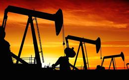 Đã đánh mất 20-30% thị giá, các cổ phiếu dầu khí có gì để kỳ vọng trong năm 2018?
