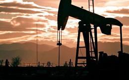 Goldman Sachs nâng dự báo giá dầu lên 82,5 USD/thùng