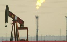 Giá dầu tăng 2 tuần liên tiếp