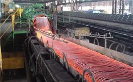 VDSC: Mỹ đánh thuế nhập khẩu thép là động lực phát triển cho doanh nghiệp Việt