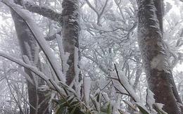 Thời tiết lạnh khắc nghiệt - cảnh giác nguy cơ đột quỵ