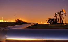 Giá dầu tăng mạnh trước khả năng gặp gỡ Mỹ-Triều
